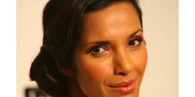 The Padma Lakshmi Husband Drive