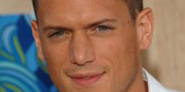 Celebrity Sex: 'Prison Break' Star Wentworth Miller: I'm Gay