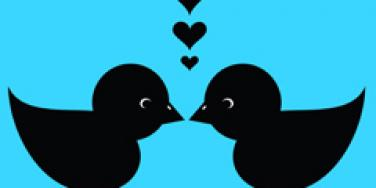 twitter love romance birds kissing