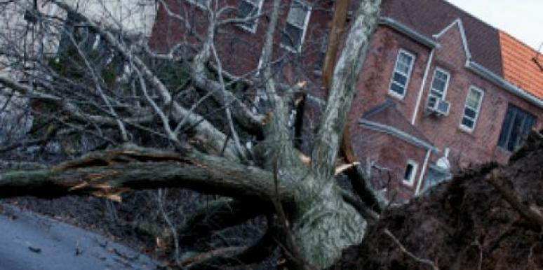 Maintaining Confidence During Sandy's Aftermath [EXPERT]