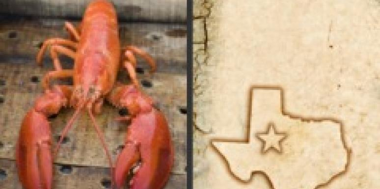north south lobster texas