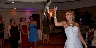 Forget Bouquets! Here Are 15 Brides Throwing Cats