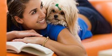 5 Tips To Cope With The Loss Of A Pet [EXPERT]