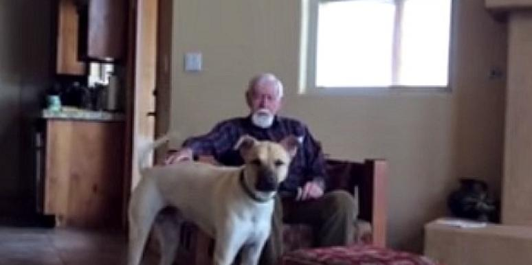 father and dog