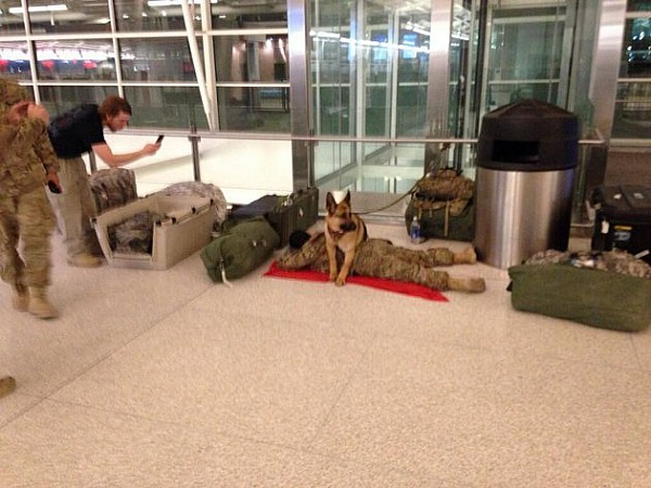 """<a href=""""https://shine.yahoo.com/ellen-good-news/military-dog-protects-soldier-8211-even-airport-200900092.html"""" target=""""_blank"""">shine.yahoo.com</a>"""