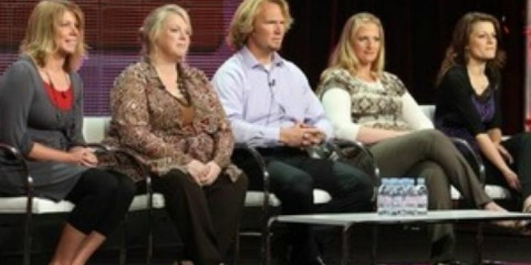 'Sister Wives': Is Having 17 Kids Selfish?