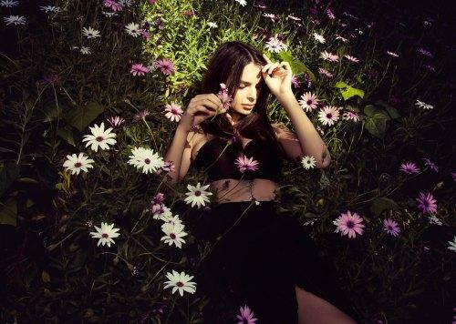 """<a href=""""http://celebsvenue.in/images/show.php/89198_emily-ratajkowski-photo-shoot-by-olivia-malone-2012-017.jpg.html"""">celebsvenue.in</a>"""