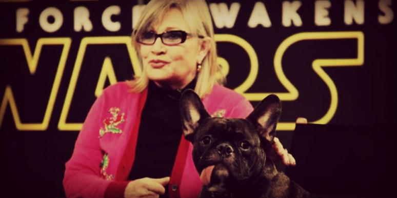 carrie fisher sobriety