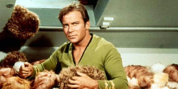 "<a href=""http://www.locatetv.com/blog/wp-content/uploads/2011/03/77526-21.jpg""/>William Shatner</a>"