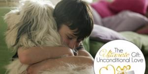 Relationship Expert: Unconditional Love