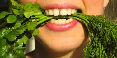 Why Cilantro Tastes Just Like Soap, According To Science