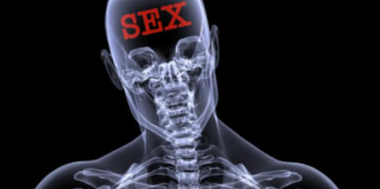 sex on the brain