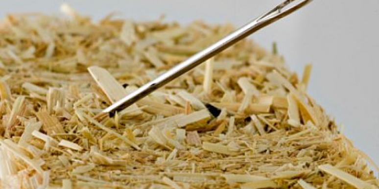 Niche Dating: Finding Needles In Haystacks [EXPERT]