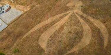 French sexologists cut crop field to look like a vagina.