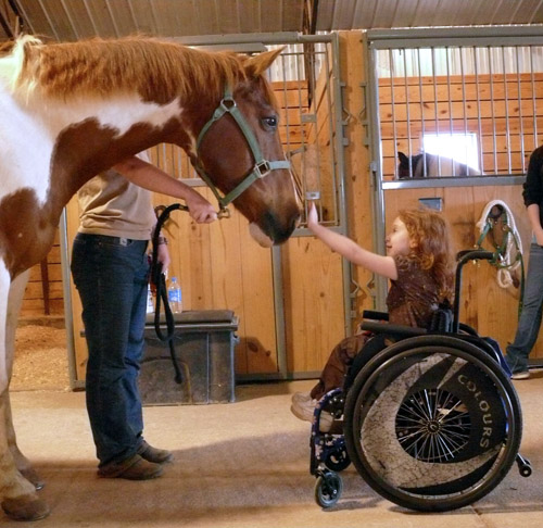 """<a href=""""https://www.ncmedical.com/animal-assisted-therapy"""">ncmedical.com</a>"""