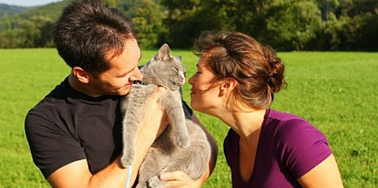 7 Must-See Attractions For Crazy Cat Couples