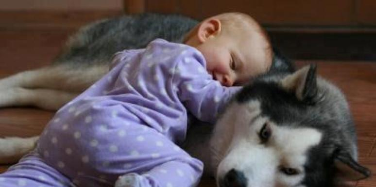Baby and dog as best friends