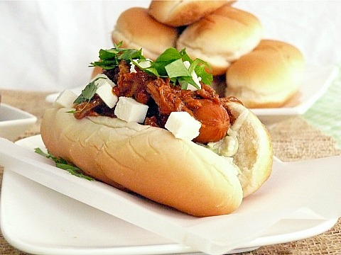 Pulled Pork Hot Dog