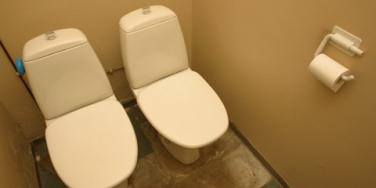 his-and-hers toilets