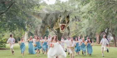 wedding dinosaur