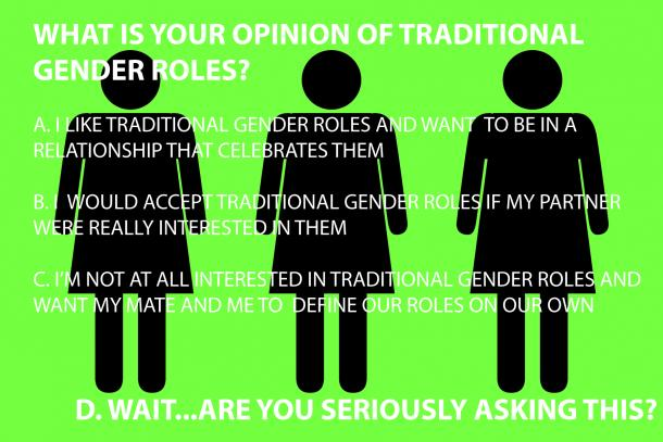 WHAT IS YOUR OPINION OF TRADITIONAL GENDER ROLES?