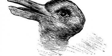 Rabbit or duck picture.