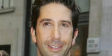 David Schwimmer Zoe Buckman engaged