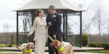 blind couple with dogs