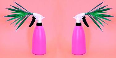 I Sprayed This Vegan Spray On My Vagina So You Don't Have To