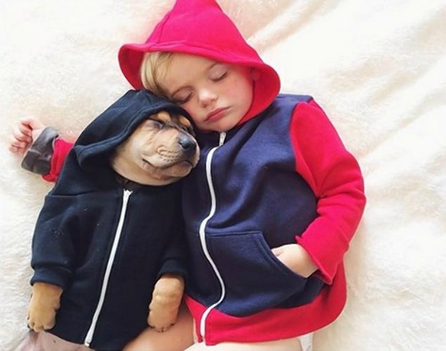 "<a href=""http://www.nydailynews.com/life-style/boy-pupping-napping-viral-online-article-1.1542171"">nydailynews.com</a>"