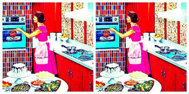 Retro Housewives