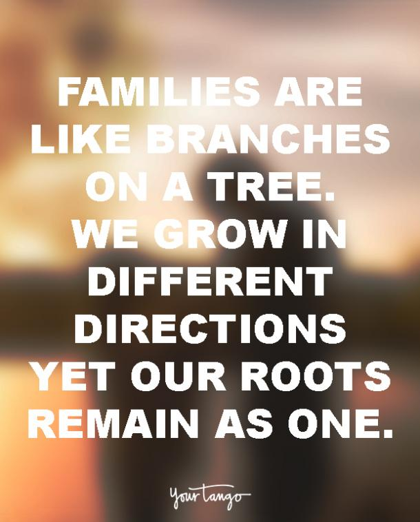 why family is important quotes