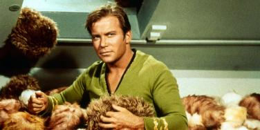William Shatner from Star Trek