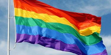 Gay Marriage flag
